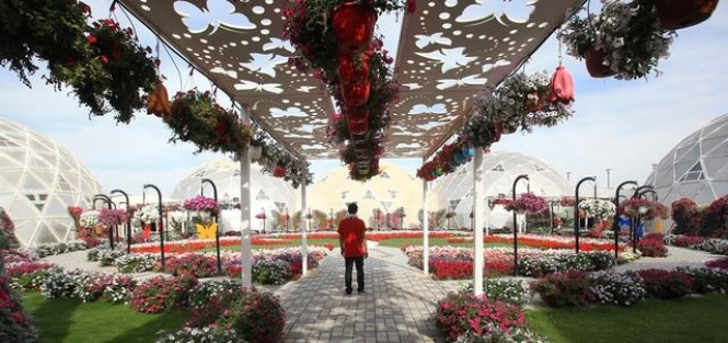 حديقة الفراشات في دبي 1.jpg