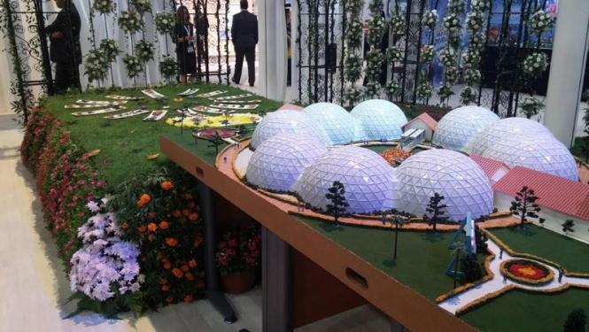 حديقة الفراشات في دبي 2.jpg
