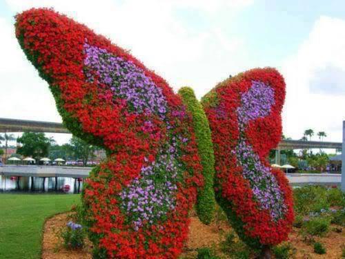 حديقة الفراشات في دبي 238855760.jpg