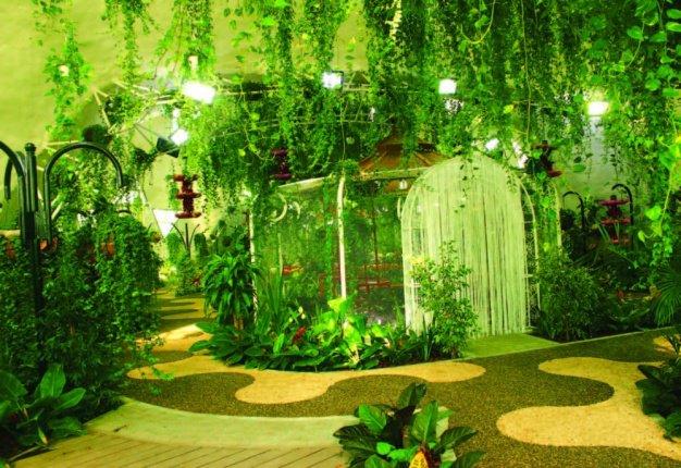 حديقة الفراشات في دبي 3.jpg