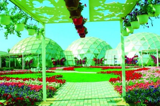 حديقة الفراشات في دبي 4.jpg
