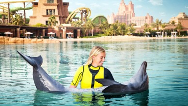 تدريب الدلافين, اصطياد الدلافين, الانسان والدولفين, موسوعة الأحياء المائية